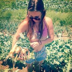 Harvesting dinner in Crawford, Colorado (July 2016)