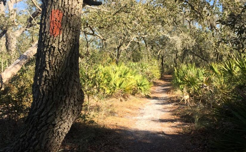 Little Manatee River State Park – Wimauma,Florida
