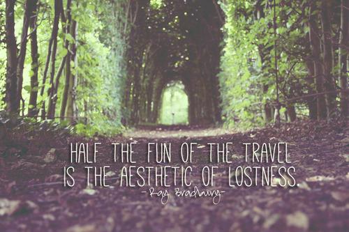 half the fun of travel